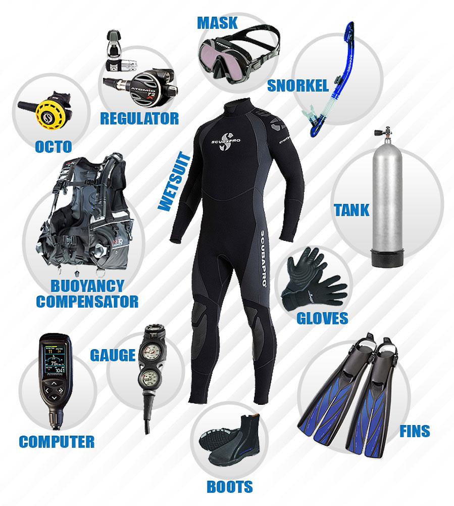 electron beam curing equipment diagram scuba gear rental   myrtle beach scuba diving - coastal scuba diving equipment diagram labeled #6